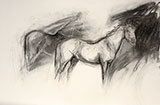 Charcoal Study (two horses)