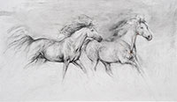 Two Horses Galloping